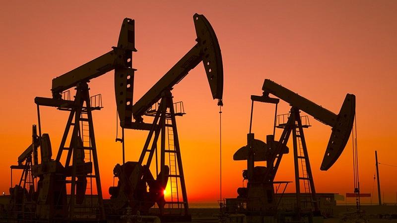 台海石油公司