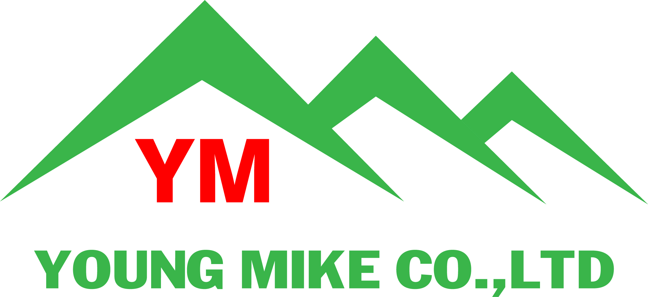 YOUNG MIKE CO., LTD