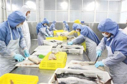 工业产品出口在前江省经济发展中扮演重要角色