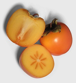 北件省着力打造无粒柿子品牌