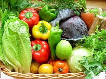 越南蔬果对中国的出口额大幅下降