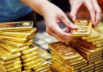 9月24日上午越南國內黃金價格下降30萬越盾