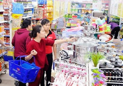 促進國內商業發展戰略