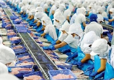 Xuất khẩu thủy sản của Việt Nam sang Đức bước đầu đã tận dụng được ưu đãi từ Hiệp định EVFTA