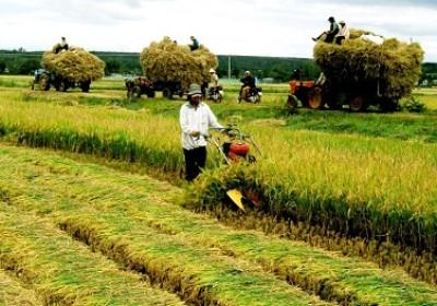 打造無公害有機農業