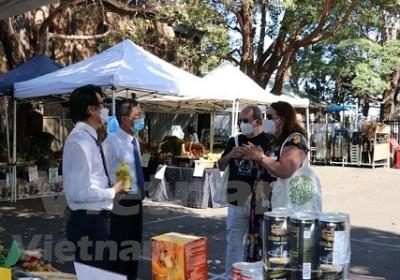 """""""品尝越饭""""活动引起澳大利亚民众的关注"""